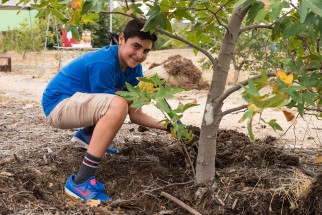 amigos_tree_planting_madrid