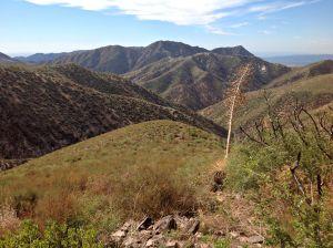 Condor Peak PWA