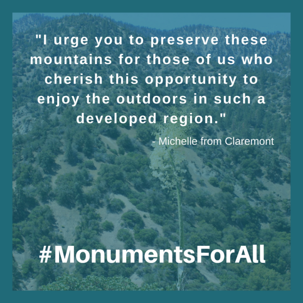 sgmf monument support comments michelle